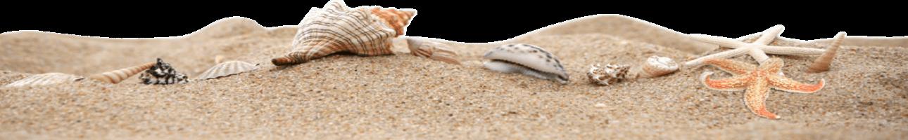 Bandeau beach sand material