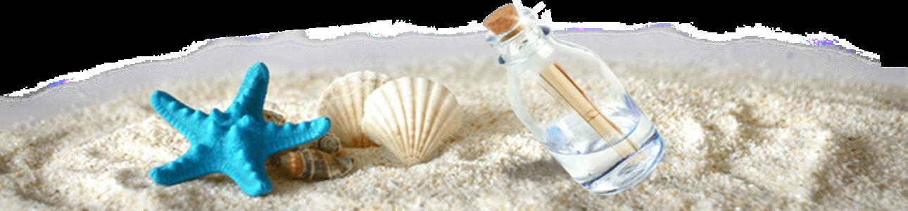 Bandeau bottle starfish