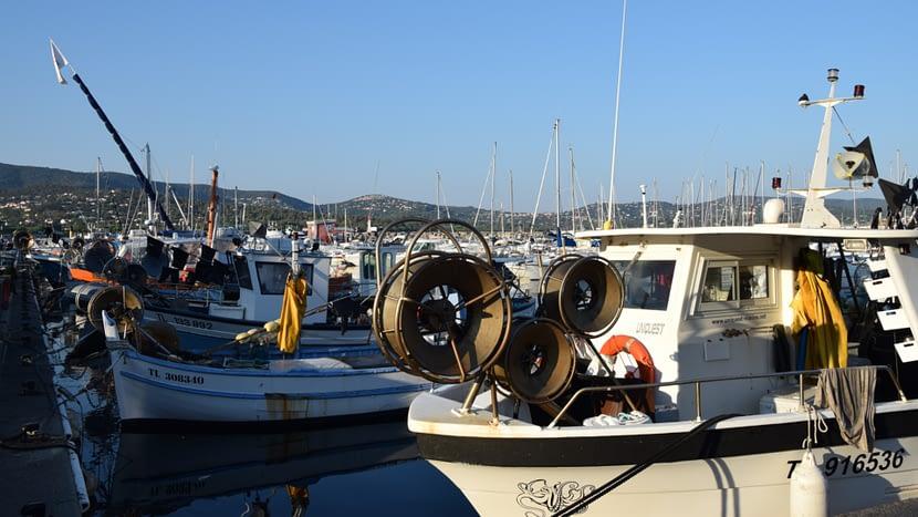 Port de pêche à Cavalaire